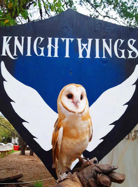 Knightwings